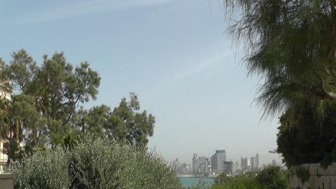 View of Tel-Aviv from Jaffa between trees Footage