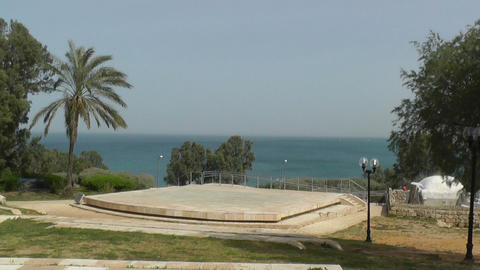 Trees on sea shore in Jaffa Stock Video Footage