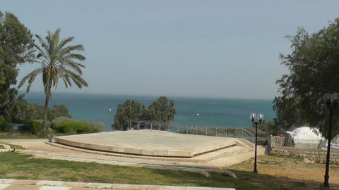 Trees on sea shore in Jaffa Footage