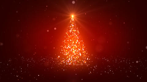 The Christmas Tree_042 stock footage