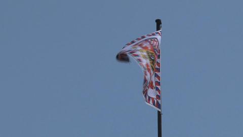 Flag at Prague Castle Stock Video Footage