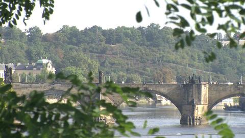 Charles Bridge Stock Video Footage