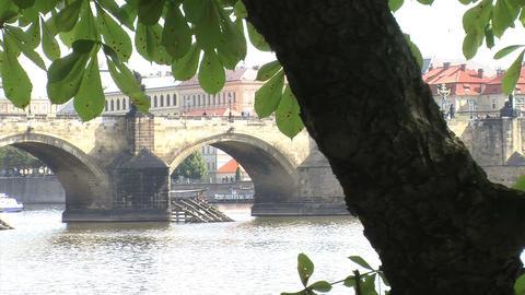 Charles Bridge Footage