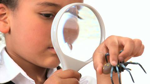 Cute african american schoolgirl examines a plastic spider Footage
