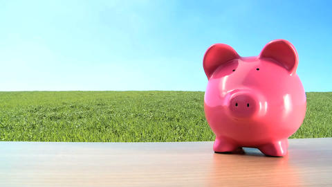 Concept shot of money pig for green investment in an environmental future Footage