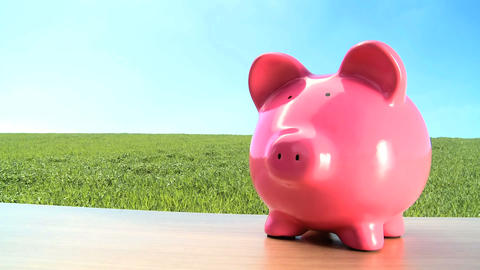 Concept shot of money pig for green investment in an... Stock Video Footage