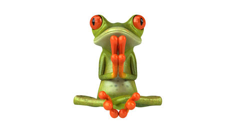 yoga frog HD Stock Video Footage