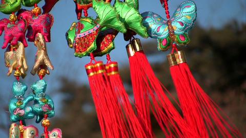 ChineseNY2009 Stock Video Footage