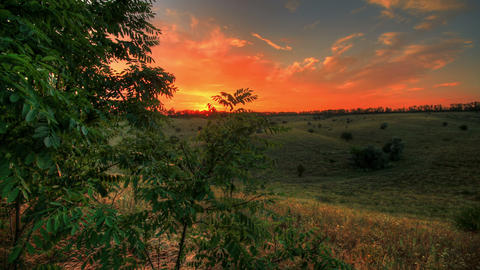 4k. Timelapse Spring Sunset Over Meadow Stock Video Footage