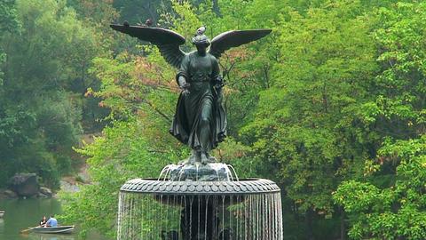 Central Park Footage