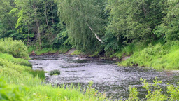 river 3 Stock Video Footage