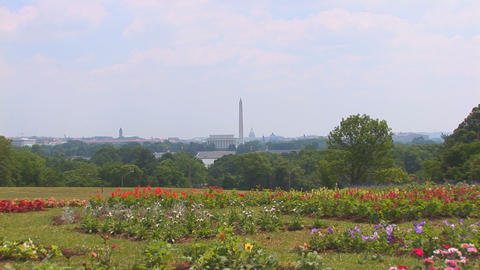 Washington, DC Stock Video Footage