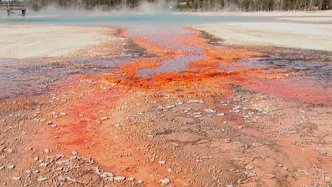 Rainbow Pool, Black Sand Basin in Yellowstone National Park Footage
