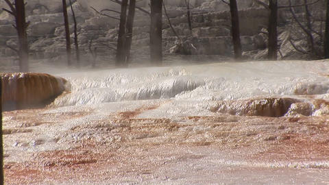 Mammoth Hot Springs, Yellowstone National Park Stock Video Footage