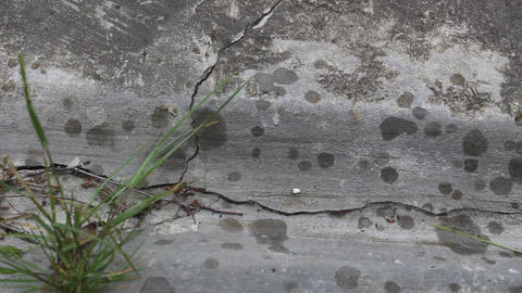 Raindrops appear on concrete 2 Stock Video Footage