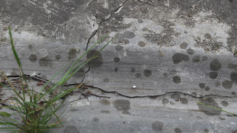 Raindrops appear on concrete 2 Footage