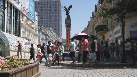 Harbin Zhongyang Dajie 03 Stock Video Footage