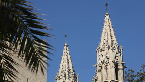 7fy 6View Of The Cathedral Of Santa Maria Of Palma stock footage