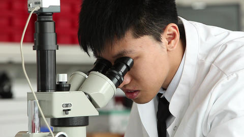 Young asian male scientist looking into microscope Footage