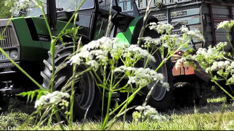 Tractor Harvesting Hay On A Large Meadow stock footage