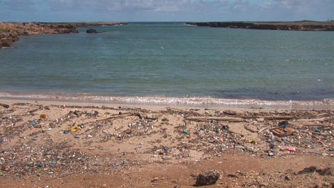 Pollution on beach on Bonaire Live Action