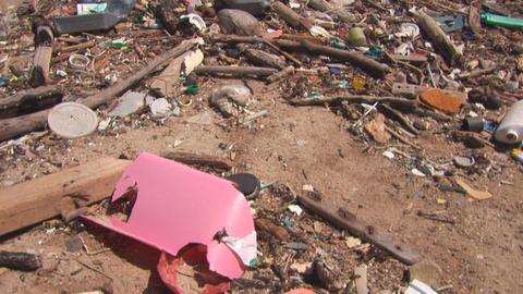 Pollution on beach on Bonaire Stock Video Footage