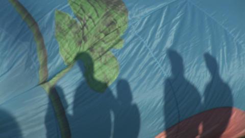 Hot air balloon silhouettes Footage