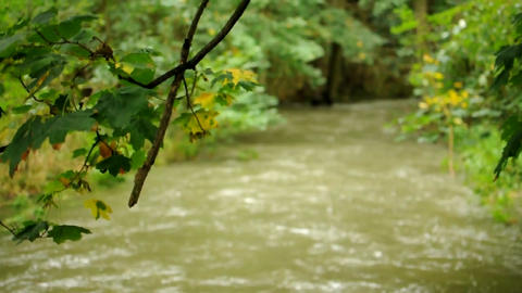 Stream with kayak Stock Video Footage