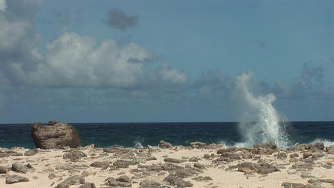 Rough coast on Bonaire Footage