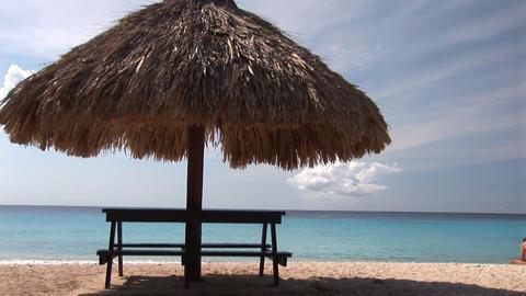 Caribbean beach Stock Video Footage