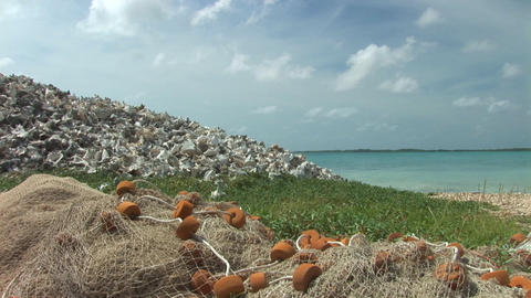 Heap of empty shells with fishing net Footage