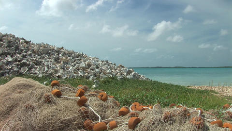 Heap of empty shells with fishing net Stock Video Footage