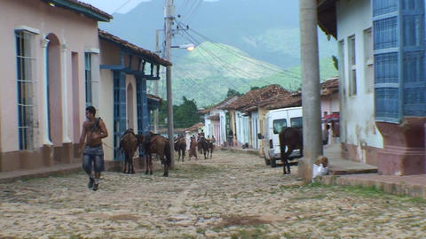 Trinidad Streetview colonial houses horses zoom ou Stock Video Footage