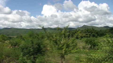 Valle De Los Ingenios Train View From The Train 11 stock footage
