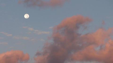 Cuba Full moon Stock Video Footage