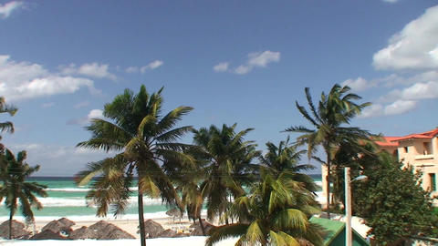 Varadero Palmtrees and beachview 2 Stock Video Footage