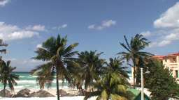 Varadero Palmtrees and beachview 2 Footage