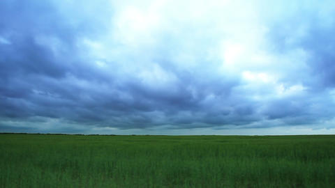 Green Field And Clouds Stock Video Footage