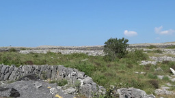 Burren Landscape 2 Stock Video Footage
