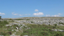 Burren Landscape 2 Stock Video Footage