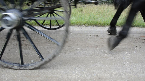 Detail Of A Horse Carriage stock footage