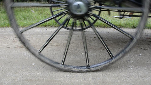 Detail of a horse carriage Stock Video Footage