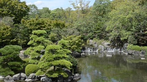Japanese garden Stock Video Footage