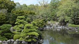 Japanese garden Footage