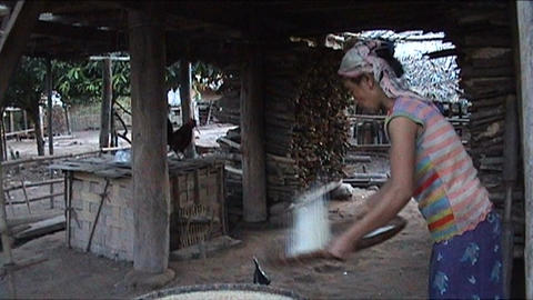 Khmu girl is pounding rice Stock Video Footage