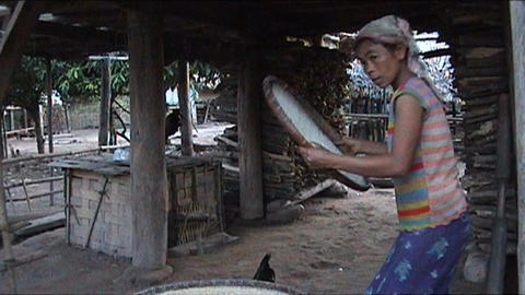 Khmu girl is pounding rice Footage