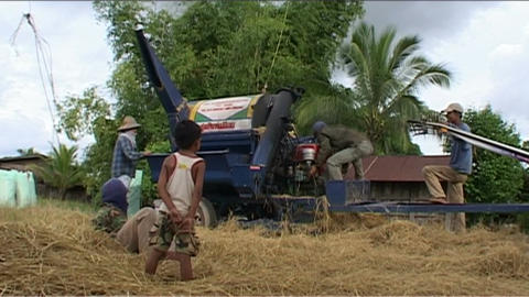 Agricultural machinery for rice Footage
