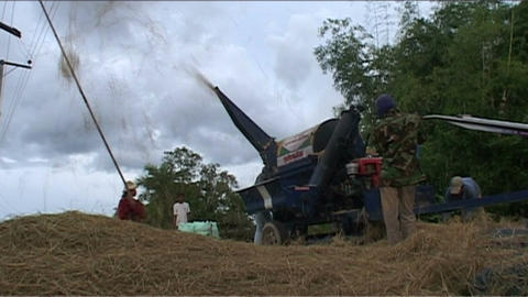 Agricultural machinery for rice Stock Video Footage