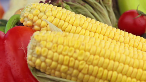 Corn and other vegetables. Close-up Stock Video Footage