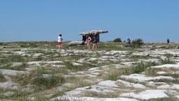 Poulnabrone dolmen 1 Footage